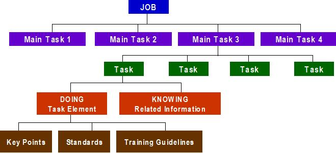 Breaking down the components of a job during task analysis